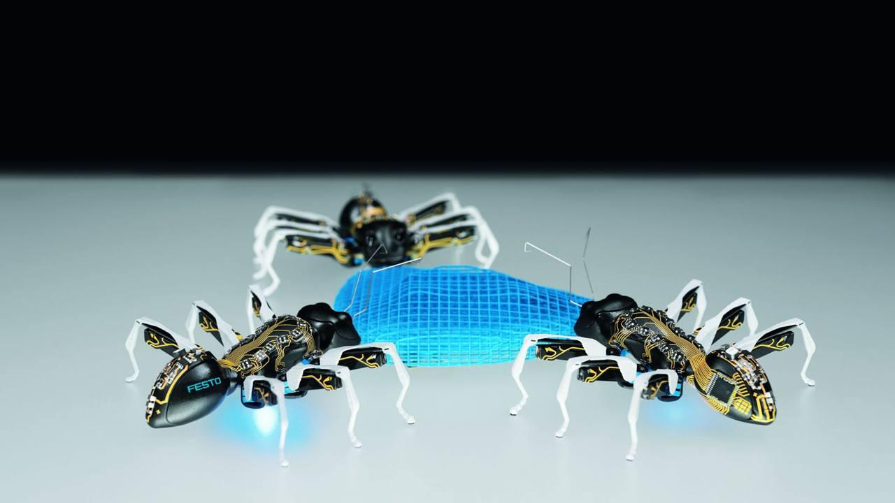 Біотехнології розширюють межі можливого